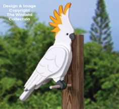 All Yard & Garden Projects - Giant Cockatoo Woodcraft Pattern Wood Craft Patterns, Bird Patterns, Outdoor Wood Projects, Garden Projects, Wooden Garden Ornaments, Winfield Collection, Animal Cutouts, Bois Diy, Wood Animal