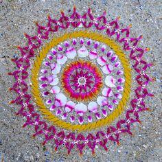 Pembe-Turuncu-Beyaz  Sanatçı: Kathy Klein. Tamamı İçin; http://www.danmala.com/gallery/