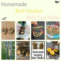 10 Bird Feeders Kids Love To Make - So much fun.  @Jackie Ramacher you guys have any cool birds down there E could make these for?!