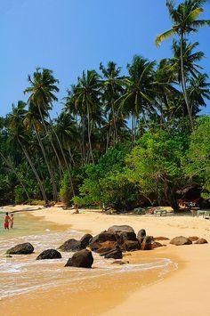 Mirissa Beach, Sri Lanka. One of my favourite Sri Lankan beaches!