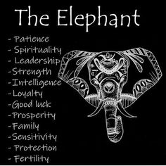 elephant tattoos meaning / elephant tattoos ` elephant tattoos small ` elephant tattoos mother daughter ` elephant tattoos meaning ` elephant tattoos with flowers ` elephant tattoos for women ` elephant tattoos sleeve ` elephant tattoos men Elephant Symbolism, Elephant Tattoo Meaning, Elephant Tattoos, Animal Symbolism, Animal Tattoos, Elephant Tattoo Design, Elephant Spirit Animal, Elephant Quotes, Elephant Love