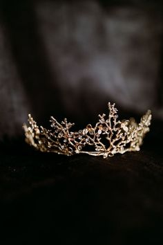 Crown Aesthetic, Queen Aesthetic, Gold Aesthetic, Princess Aesthetic, Dark Princess, Princess Tiara, Dark Queen, Fantasy Life, Gold Crown