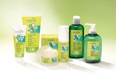 Logona organic cosmetics