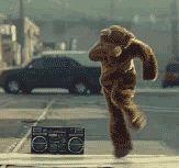 Breakdancing Bear