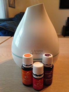 Ylang Ylang, Orange, Lavender
