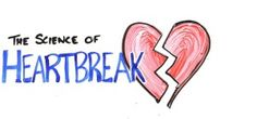Quoteschart is always committed to give you a bunch of quotes in numerous category. For this reason today I am going to share with you about heartbreak quotes.