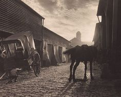 Paddy's Market, Sydney, Australia (1906) by Harold Cazneaux :: The Collection :: Art Gallery NSW