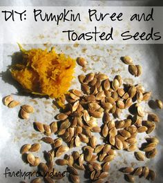 Turn that piece of pumpkin decor into food before it becomes so last season!