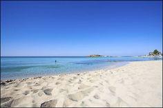 Nissi Beach, Ayia Napa, Cyprus -- see you sooon The Beach, Ayia Napa, Nissi Beach, Best Beaches In Europe, Cyprus, Beautiful Beaches, Beautiful Scenery, Night Life, Paisajes