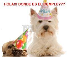 Imágenes y Tarjetas de Cumpleaños Graciosas - ツ Imagenes y Tarjetas para Felicitar en Cumpleaños ツ