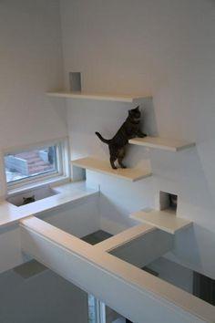 Encore un bel exemple de l'optimisation d'une généreuse hauteur de plafond. Super!
