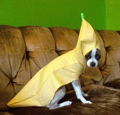 Saddest banana ever!