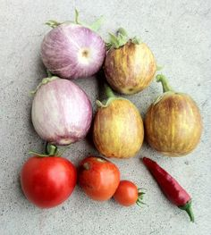Container Harvest – August 5th, 2012
