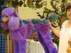 Creative Grooming: Vineyard by Groomer Goddess, via Flickr