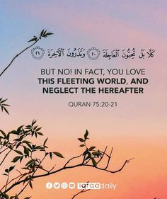 Islamic Inspirational Quotes, Quran, Verses, Facts, World, Movie Posters, Instagram, Scriptures, Film Poster