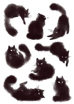 Risultati immagini per furry black cat tattoo Crazy Cat Lady, Crazy Cats, Portfolio Illustration, Black Cat Illustration, Shadow Illustration, Halloween Illustration, Watercolor Illustration, Illustration Animals, Illustration Artists