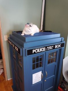 I saw this over at Mousebreath  earlier in the week. I love it! This guy built his cat a TARDIS play house, how perfect is that?!           ...