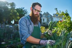 bearded man with glasses tending to urban garden