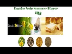 Amba Gums & Feed Products has reached to the top in manufacturing and exporting Guar gum powder, cassia powder, guar gum splits, guar meal (Churi and Korma) and Sisbania gum powder. To get more information about #CassiaGumPowderManufacturer & Exporter from India, visit us at: https://www.ambagums.com/products/cassia-powder/ #AmbaGums