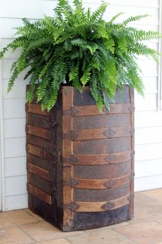 Antique Trunk for Plant Stand
