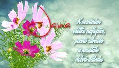 Jana K meninám všetko najlepšie, pevné zdravie a neustále dobrú náladu