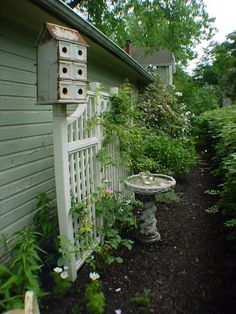 Love this,  I will add a birdbath against the north side of the chicken coop and grape area.