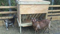 wood feeder - looks safe, should keep hay dry