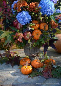Pumpkin Vase, Pumpkin Centerpieces, Mini Pumpkins, Vase Centerpieces, Fall Floral Arrangements, Hydrangea Not Blooming, Blue Hydrangea, Fall Table, Thanksgiving Table