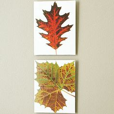 If I find myself having some time for DIY crafting this fall, I def want to try this.