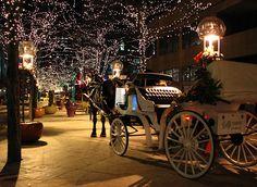 blissfully-winter:  tisalwaystheseasonforjoy:  Kick Off The Season — Denver Holiday Events | Talavera on We Heart It. http://weheartit.com/entry/41312015   all year round xmas/winter blog! I follow back similar xx
