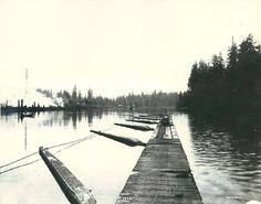 Swalwell's Landing, Snohomish River, Everett, Washington, 1891.