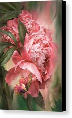 Foto Art Floral, Floral Design, Pink Peonies, Pink Flowers, Exotic Flowers, Yellow Roses, Fresh Flowers, Pink Roses, Illustration Blume