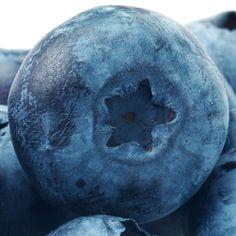 10 Reasons to Eat Blueberries (Bonus Recipe Included)
