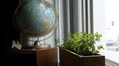 How to Bring Your Garden Indoors