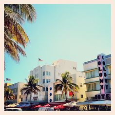 A picture I took one relaxing afternoon in South Beach. (Photographed by: @ChrisLopezMiami)