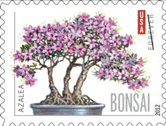 Bonsai stamp