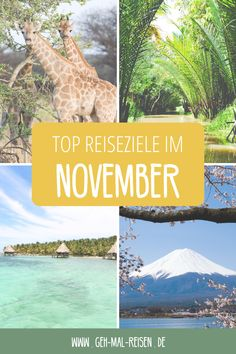 Was sind die besten Reiseziele im November? Auf unserem Reiseblog findest du es heraus! Darunter befinden sich Geheimtipps in Europa, Orte, wo es auch im Herbst warm ist und mehr. #gehmalreisen #reiseziele #reisetipps