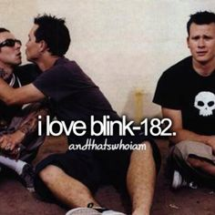 Blink 182! It is who I am!!! Their lyrics fit me perfect