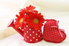 Belle idée de vase pour ces gerberas rouges dans un arrosoir rouge à pois blancs