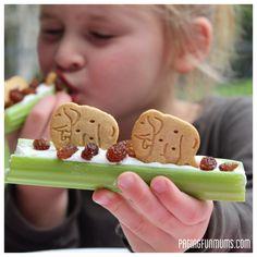 Healthy & FUN After-School Snack Celery Animal Snacks Healthy & FUN After-School Snack Celery Animal Snacks! The post Healthy & FUN After-School Snack Celery Animal Snacks appeared first on School Ideas. Animal Snacks, Animal Crackers, Animal Fun, Healthy Afternoon Snacks, Healthy Snacks For Kids, Kid Snacks, Jungle Snacks, Class Snacks, Baby Snacks