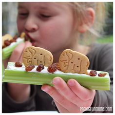 Try these celery sticks topped by animal crackers with a glass of Borden milk! - from www.pagingfunmums.com