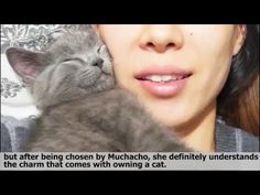 Kitten runt won't stop cuddling with his human mom, comforts her when she's sick - YouTube
