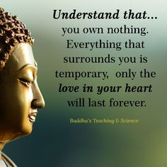 """68 Motivational Inspirational Quotes to Inspire You to Succeed """"A positive mind finds a way it can be done; a negative mind looks for all the ways it can't be done. Motivational & Inspirational Quotes Every Buddha Quotes Inspirational, Inspiring Quotes About Life, Spiritual Quotes, Positive Quotes, Motivational Quotes, Quotes By Buddha, Zen Buddhism Quotes, Buddha Thoughts, Buddha Life"""