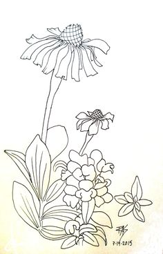 The Blank Coloring Page
