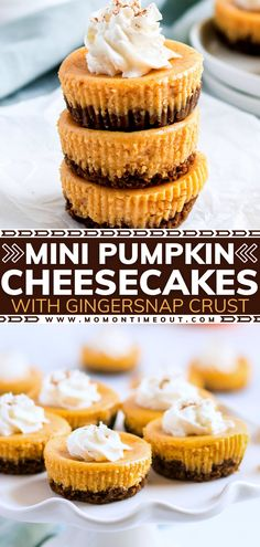 Can't get enough of pumpkin? Then you must make this easy, foolproof recipe! Paired with a rich, creamy, decadent cheesecake plus a simple gingersnap crust, this individual Thanksgiving dessert is so much fun and will be the first to go at your gathering. Save this pin!