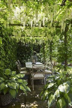 cottage Garden room Love how the plants are surrounding the seating area or potentially also enveloping the pergola Back Gardens, Small Gardens, Outdoor Gardens, Pergola Patio, Backyard, Modern Pergola, Small Pergola, Wisteria Pergola, Rustic Pergola