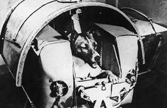 27 AĞUSTOS 1959 - SSCB uzay aracı Sputnik-3 içinde iki köpekle birlikte uzaya fırlatıldı.