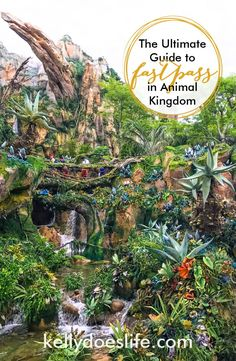 Walt Disney World's Animal Kingdom Fastpass Guide and Strategy complete with tips and tricks! From Pandora the World of Avatar to Expedition Everest, learn what rides and attractions need fastpass and which don't!
