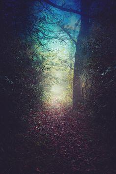 Via natureac http://natureac.tumblr.com/post/128690370938/ponderation-magical-pathways-by-nikita-gill