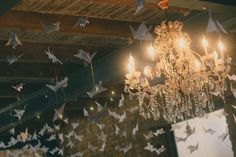 Ange and Justin's Wedding Diy Chandelier, Decoration, Origami Birds, Ceiling Lights, Lighting, Design, Wedding, Inspiration, Home Decor